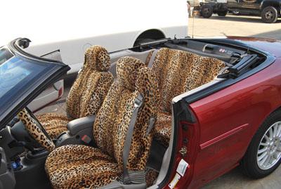 2009 Chrysler Sebring Convertible Animal A56 Gold Leopard